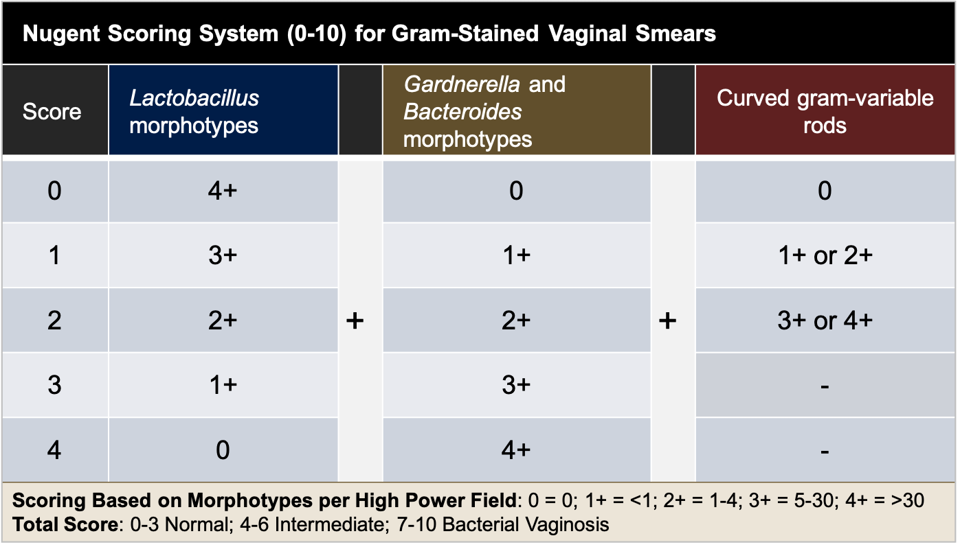 The Nugent scoring is based on morphotypes per high power field of a gram-stained vaginal swab sample.<div>Source: Nugent RP, Krohn MA, Hillier SL. Reliability of diagnosing bacterial vaginosis is improved by a standardized method of gram stain interpretation. J Clin Microbiol. 1991;29:297-301.</div>